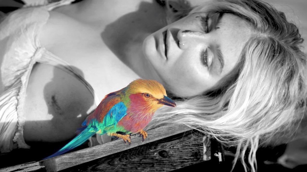 Muziekvideo's: de aangrijpend eerlijke comebacksingle van Kesha