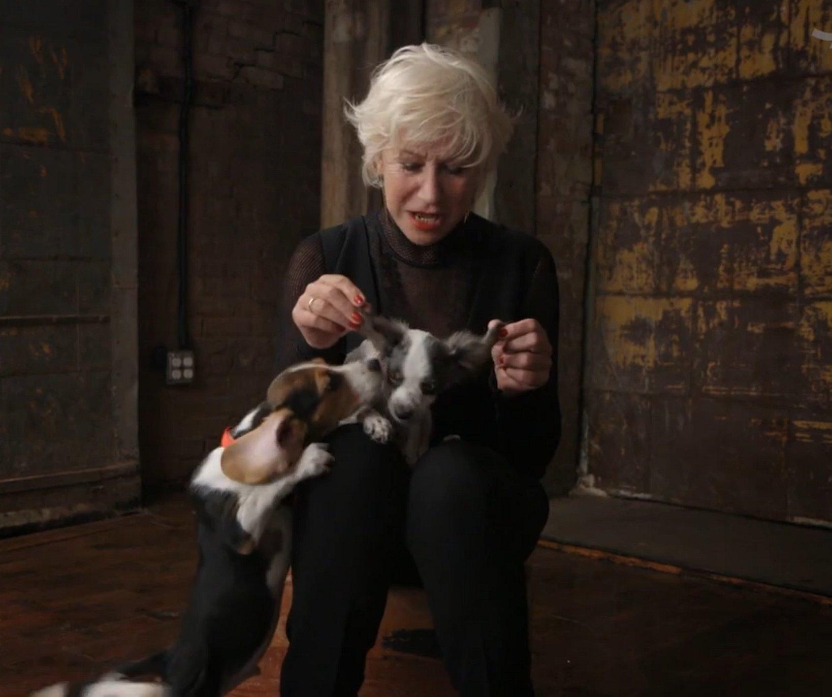 Schattiger wordt het niet vandaag: Helen Mirren knuffelt met puppies