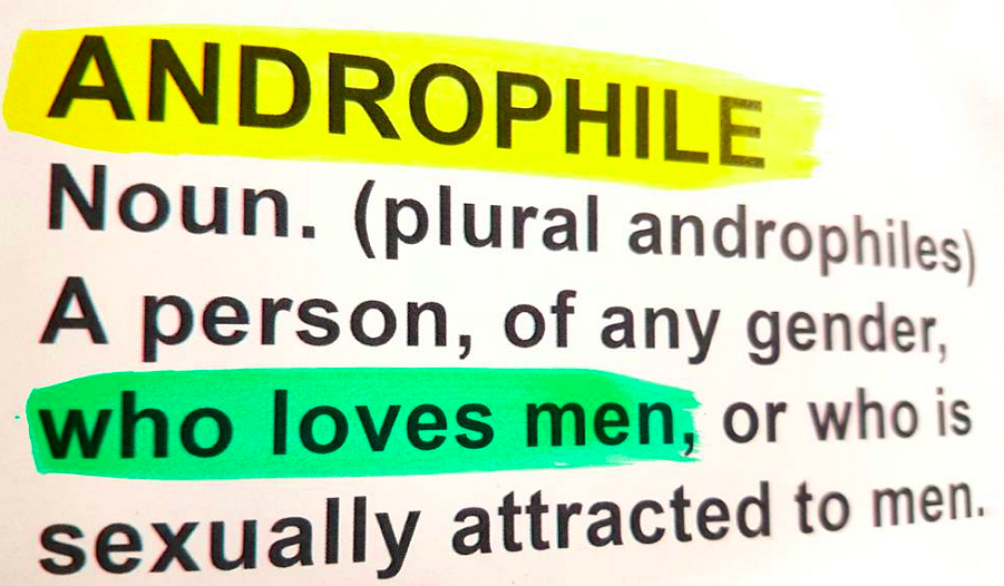 Er is een nieuw woord voor homo's die niet van Lady Gaga houden