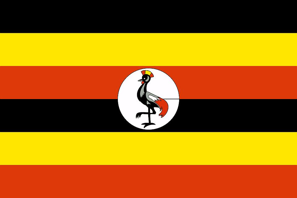17 Oegandese LHBTI-vluchtingen opgepakt