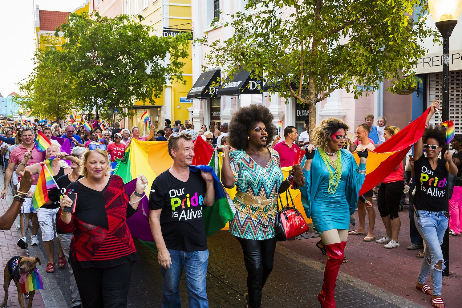 Pride Report | Our Pride is Alive!